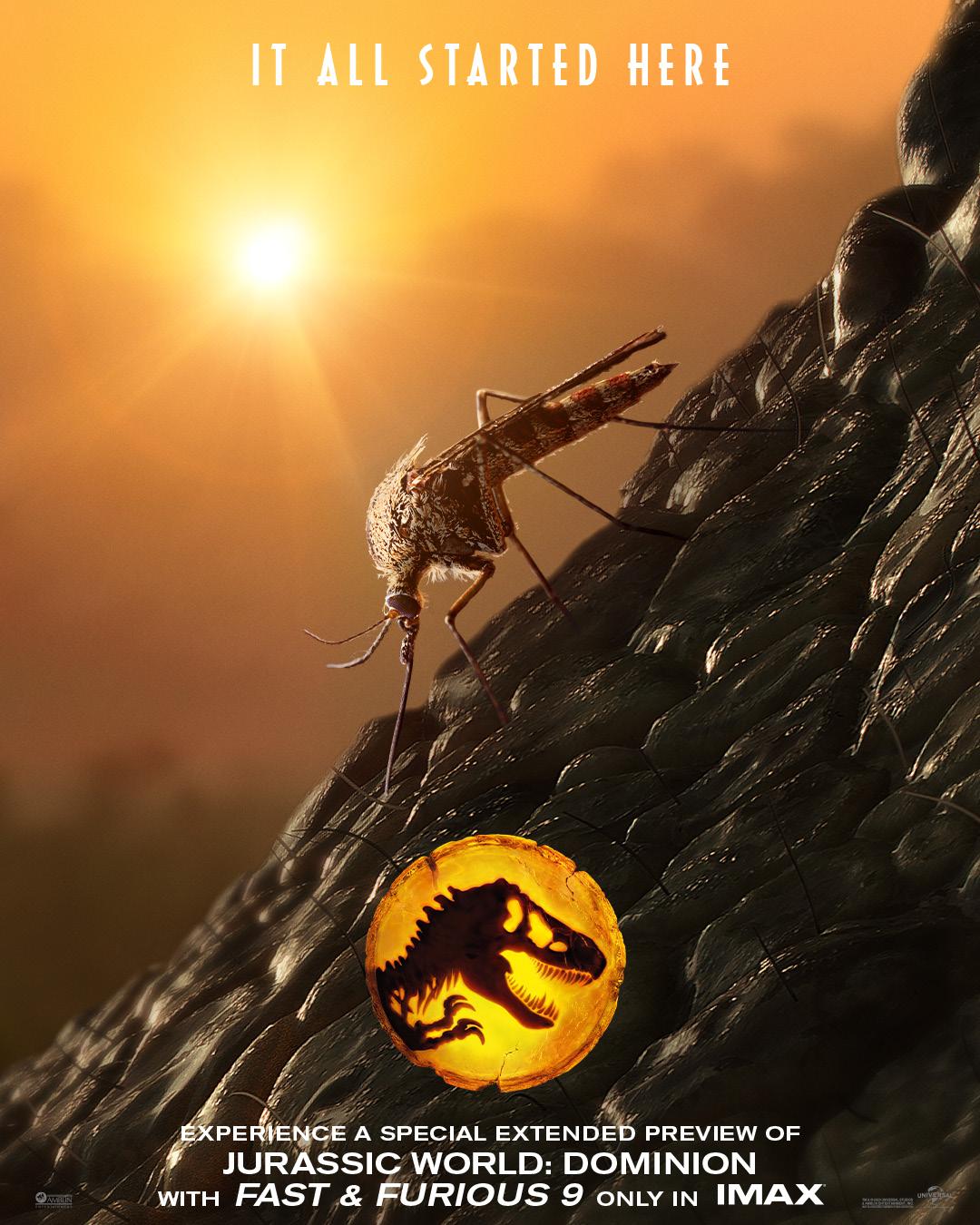 Movie poster for Jurrassic Park film.