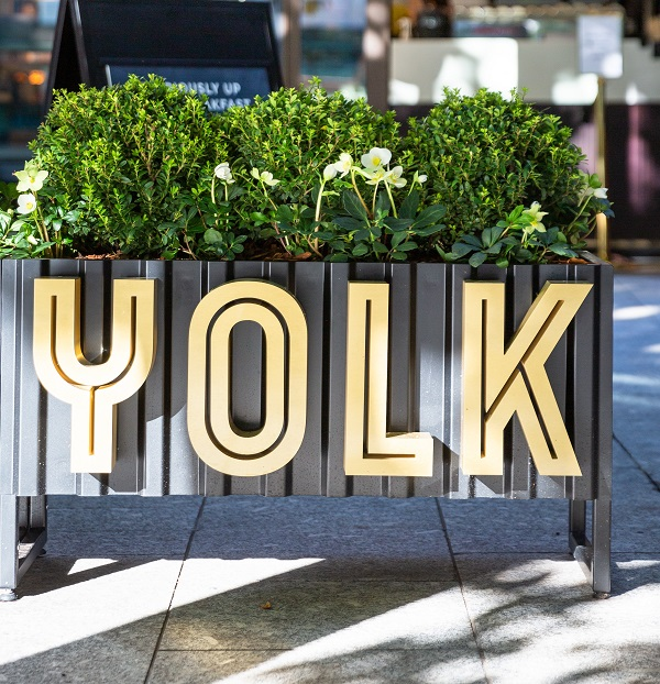 Yolk at Broadgate sign with greenery