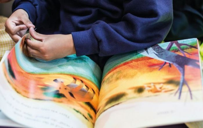 Helping Children to Read for Fun