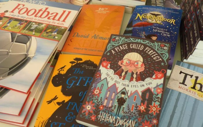 A close up image of childrens books.