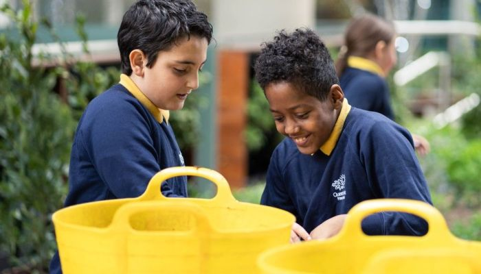 Community garden offering planting and agricultural workshops launches at Paddington Central