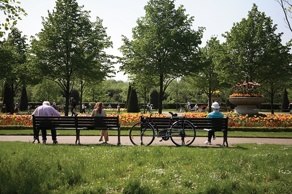Photo of Regent's Park with two benches and trees.