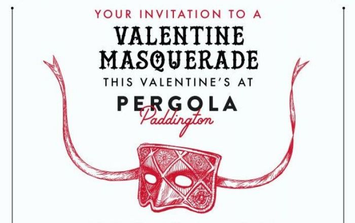 Valentine's Day masquerade party